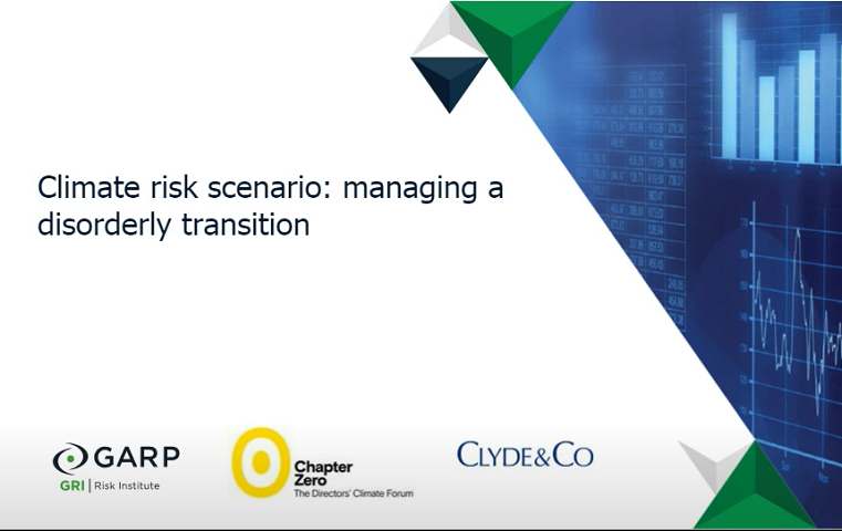Climate risk scenario: managing a disorderly transition