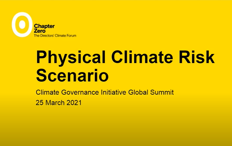 Physical Climate Risk Scenario: Climate Governance Initiative Global Summit